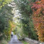 A walk along the road near cemetery