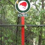 Kiwi Birdlife Centre