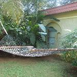 Hammock outside our Cottage