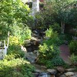 Wine Garden View