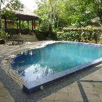 private pool and gazebo