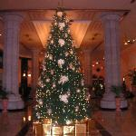 xmas tree in lobby