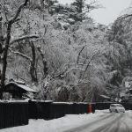 Kakunadate Samurai Village