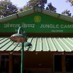 Foto de Jungle Camp