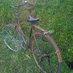 Cool 'ol bike in the rice fields