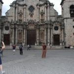 Callejon de Hamel ภาพถ่าย