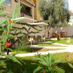 Nice garden at Theranda Hotel in Tirana