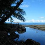 Drake Bay from a Hammock