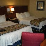 two queen size beds