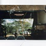 Nairobi Safari Walk ภาพถ่าย