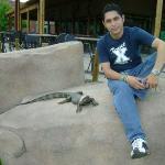 Denver Zoo ภาพถ่าย