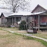 row of some of the shacks...