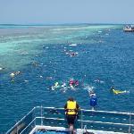 Fanta Sea - Great Barrier Reef
