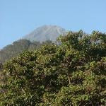 View of Mount Mweru from Appt.Window
