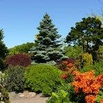 Foto de Botanical Garden