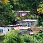 Tunapuna Road houses