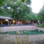 Shoestrings Vic Falls piscina o poza en medio del jardin