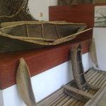 Museo de Historia Natural Mozambique 2