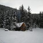 cabin in the national forest