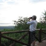 Checking out birdlife