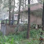 Exotica Cottage