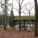 Franklin Delano Roosevelt State Park