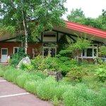 Forest Kitchen Kawai