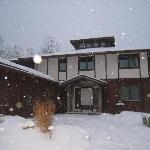 House entryway in snowfall