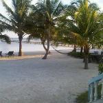 Back yard in Belize