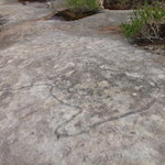 Dharawal Aboriginal Engravings Site