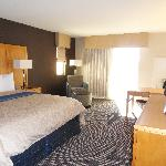 Spacious room w/ plush king sz bed