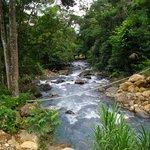 Reserva Biologica Carara