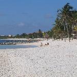 beach at Villa Del Mar