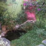 The pond with goldfish outside our bedroom window
