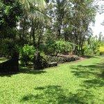 Hale Moana Hawaii Bed & Breakfast - Tropical Paradise