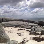 Boulders Beach, Cape Town, Penguins