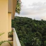 view from balcony- kinda overcast