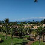 ラナイからの眺め View from the lanai (D208)