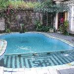 the little swimmingpool