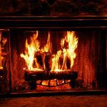 All wood burning fire places