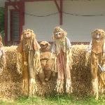 Scarecrows for Halloween