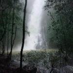 Butterfly Falls