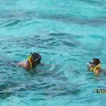 Snorkeling in Cayman with Captain Marvins