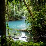 Little Cooper Creek provides a wonderful swimming experience for our guests