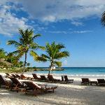 Photo de Xeliter Golden Bear Lodge Cap Cana