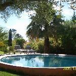 The Pool at Saxe-Coburg Lodge