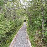 San Josef trail