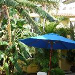 Villa Las Anclas patio - tropical welcoming area