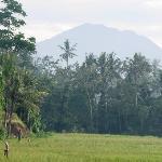 Gunung Agung in the morning from bumi ubud