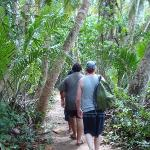 Hike through Cahuita National Park